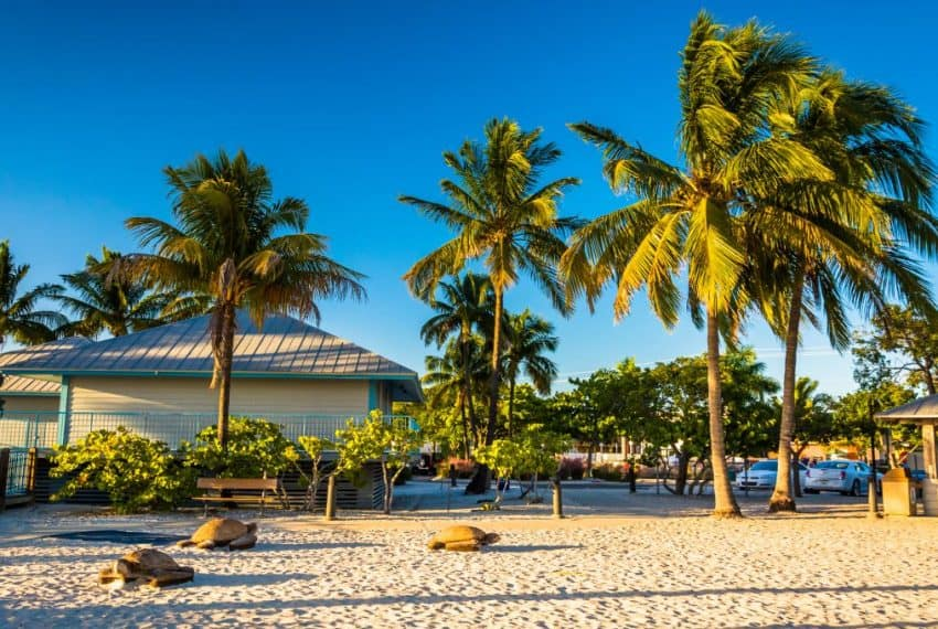 Palm_trees_on_the_beach_in_Fort_Myers_Beach_Florida_terrenosnaflorida-com_shutterstock_238053352_1200x680